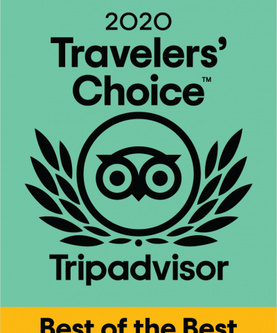 trip advisor's travelers' choice award